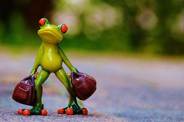 žába s kufry