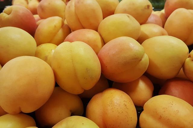 zralé meruňky.jpg