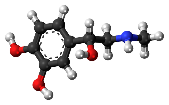 struktura molekul.png